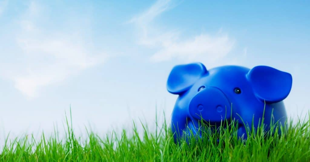 Blue piggy bank sitting on top of grassy hill on beautiful day for post on tracking your finances