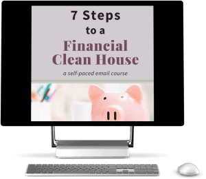 Mockup image of 7 Steps to a Financial Clean House product